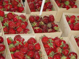 Containers of fresh, locally-grown, organic strawberries.