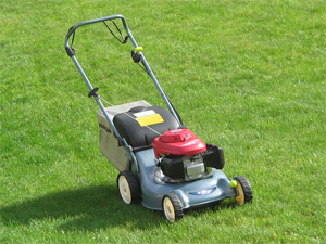 a walk behind lawn mower with a small engine
